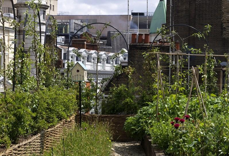 Firmdale Hotels - Roof Terrace