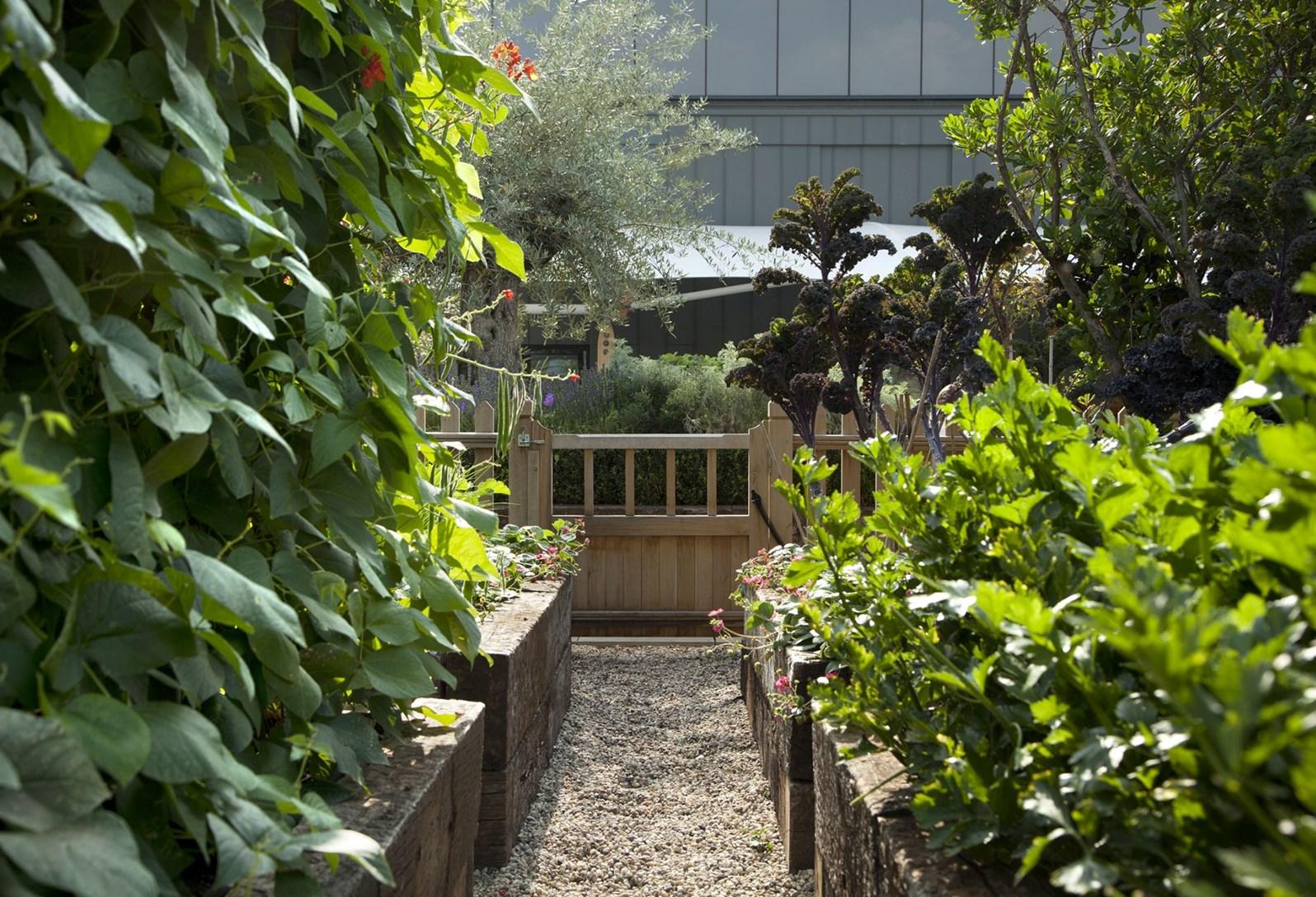 Ham Yard Hotel, London Kitchen Garden